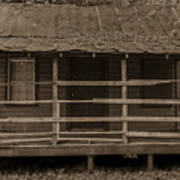 Old Shack In Sepia Poster