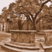 Old Sheldon Church Ruins Beaufort Sc Sepia Poster