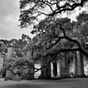 Old Sheldon Church Ruins Black And White 3 Poster