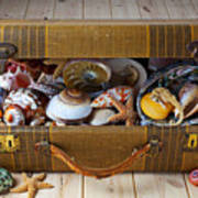 Old Suitcase Full Of Sea Shells Poster