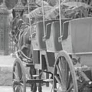 Old Time Horse And Buggy Poster