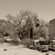 Old Tucson Landscape  Poster