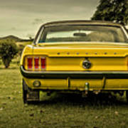 Old Yellow Mustang Rear View In Field Poster