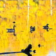 On Golden Pond Poster