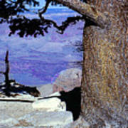 On The West Rim Of The Grand Canyon Poster