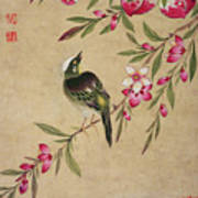 One Of A Series Of Paintings Of Birds And Fruit, Late 19th Century Poster