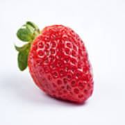 One Red Strawberry Poster