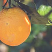 Orange #2 Poster