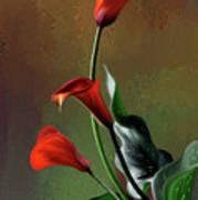 Orange Calla Lily Poster