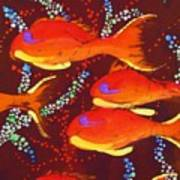 Orange Coral Reef Fish Poster