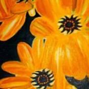 Orange Delight Poster