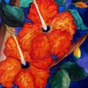 Orange Hibiscus Poster by Lil Taylor