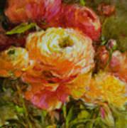 Orange Ranunculus Poster