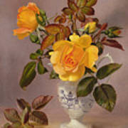 Orange Roses In A Blue And White Jug Poster