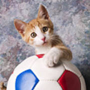 Orange Tabby Kitten With Soccer Ball Poster