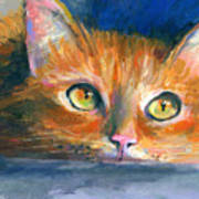 Orange Tubby Cat Painting Poster by Svetlana Novikova