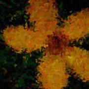 Orange-yellow Flower Poster