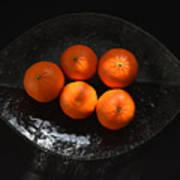 Oranges In Sunlight Poster