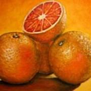 Oranges  Original Oil Painting Poster