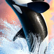 Orca 1 Poster