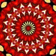 Orchid Kaleidoscope 9 Poster