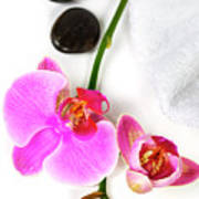 Orchid Spa Composition Poster