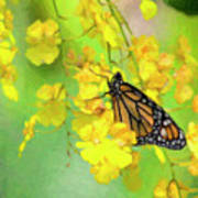 Orchids And Butterfly Painting Poster