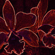 Orchids - For Pele Poster