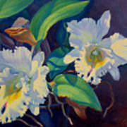 Orchids In A Blue Pot Poster