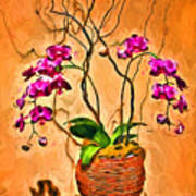 Orchids In Basket Poster