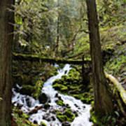 Oregon River Poster