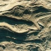 Oregon Sandstone Poster