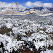 Organ Mountains With Snow Poster