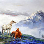Original Oil Painting On Canvas Two Horses Poster