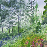 Original Watercolor - Summer Pine Forest Poster