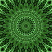 Ornamented Mandala In Green Tones Poster