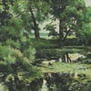 Overgrown Pond Poster