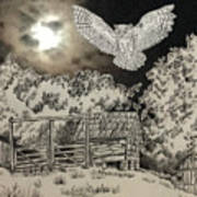 Owl In The Moonlight On Brush Mountain Poster
