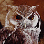 Owl Painting  Poster