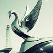 Packard Swan Hood Poster