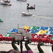 Paddleboats Waiting In The Inner Harbor At Baltimore Poster