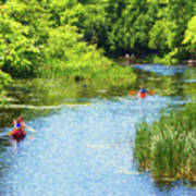 Paddling On A Calm Creek Poster