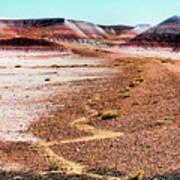 Painted Desert 0319 Poster