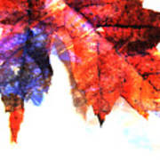Painted Leaf Series 4 Poster