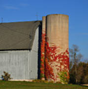 Painted Silo Poster