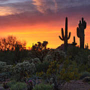 Painted Skies Of The Sonoran Desert Poster