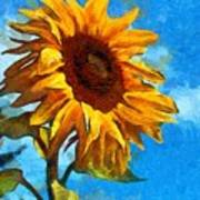 Painted Sunflower Poster