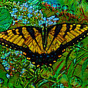 Painted Yellow Swallowtail Poster