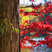 Painterly Rendition Of Red Leaves And Tree Trunk In Autumn Poster