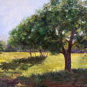 Painting Of Sunlit Meadow Poster